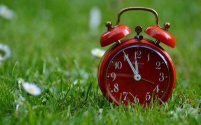 Five ways we save our clients time and stress
